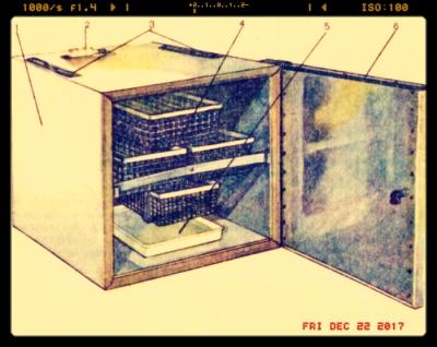 inkubator-iph-10_13-05-28.jpg