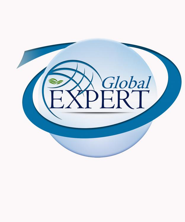 новое логотип глобал.jpg