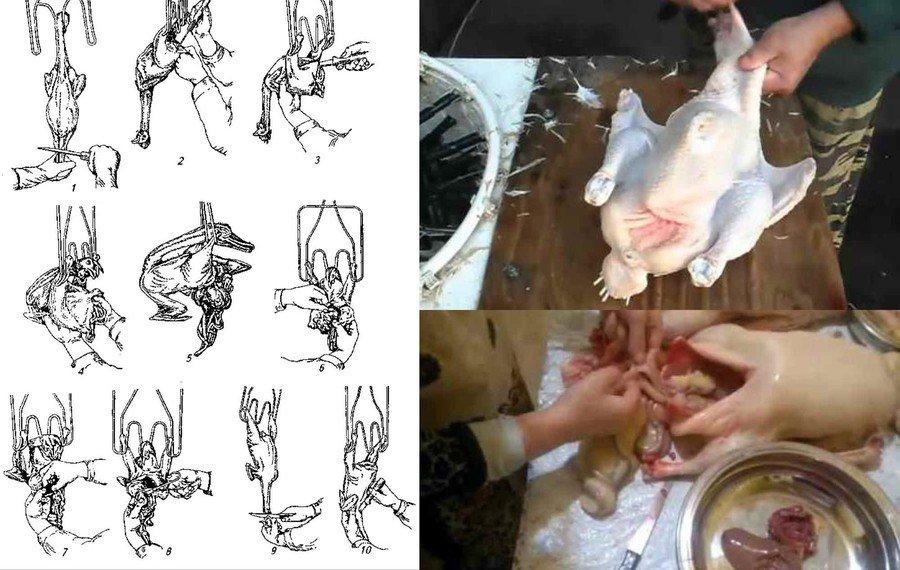 Как разделать гуся