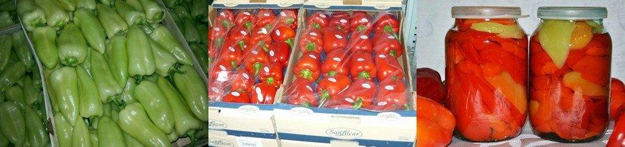 Хранение болгарского перца
