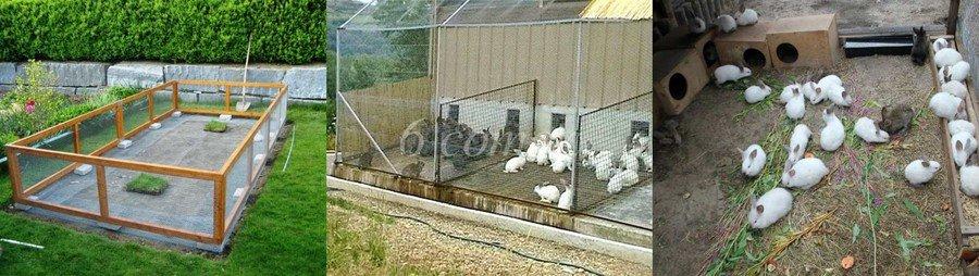 Вольеры для кроликов