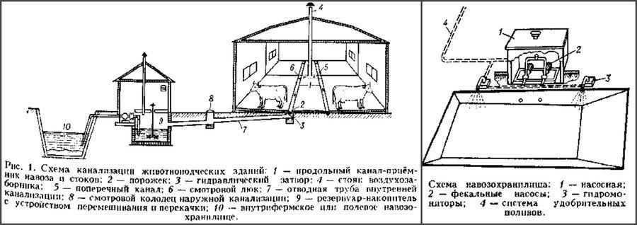 Навозохранилище чертеж