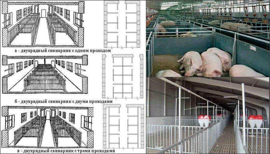 Планировка свинарника
