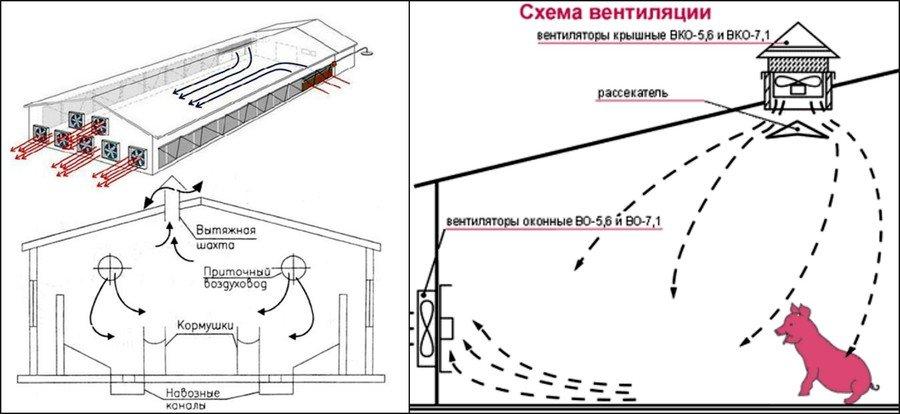 Схема вентиляции в курятнике