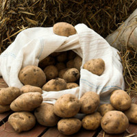 Где лучше хранить картошку в квартире