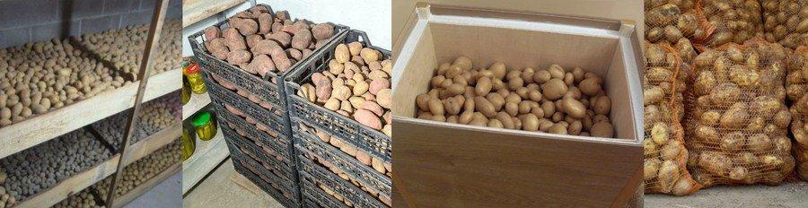Как сделать закром для картошки 834