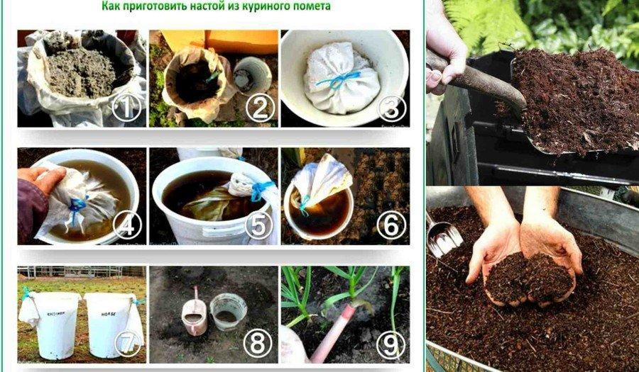 Органические удобрения картошки