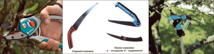 Инструменты для обрезки деревьев