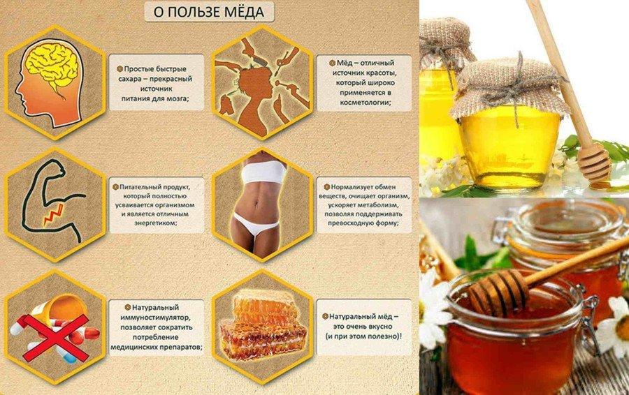 Польза и вред меда для организма человека мужчин женщин и детей