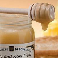 Мед с маточным молочком: полезные свойства и противопоказания