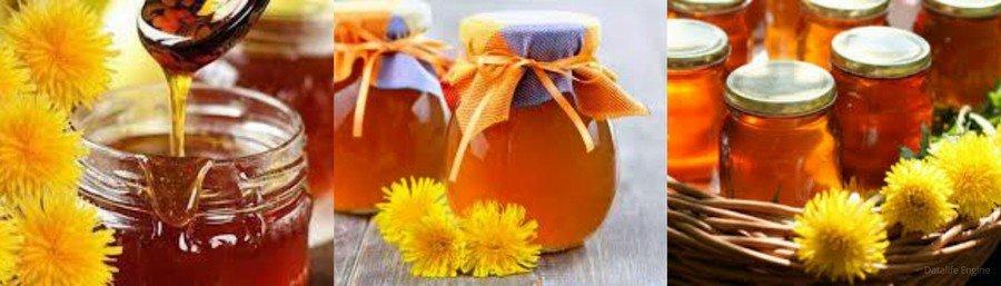 Одуванчиковый мед польза и вред