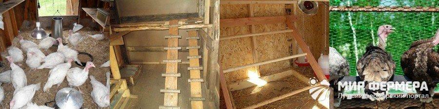 изготовление бетонной как сделать гнездо для индюшки фото поиска