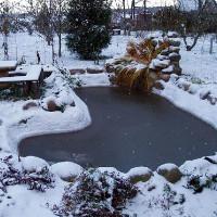Искусственный водоем зимой