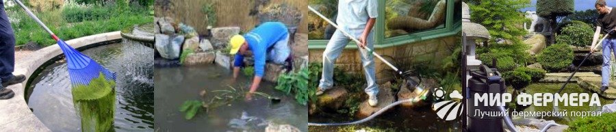 Как подготовить пруд к зимовке рыб