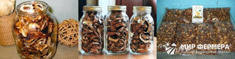 Сколько хранить сушеные грибы в домашних условиях 107