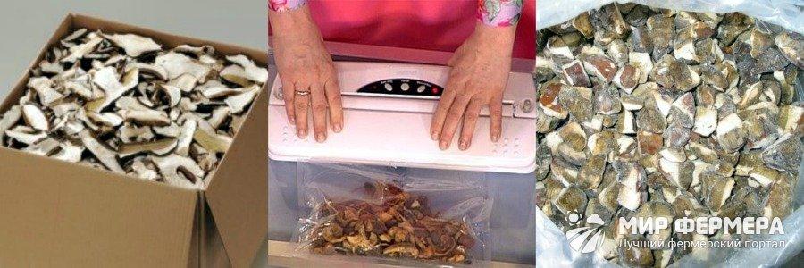 Хранение сушеных грибов в холодильнике