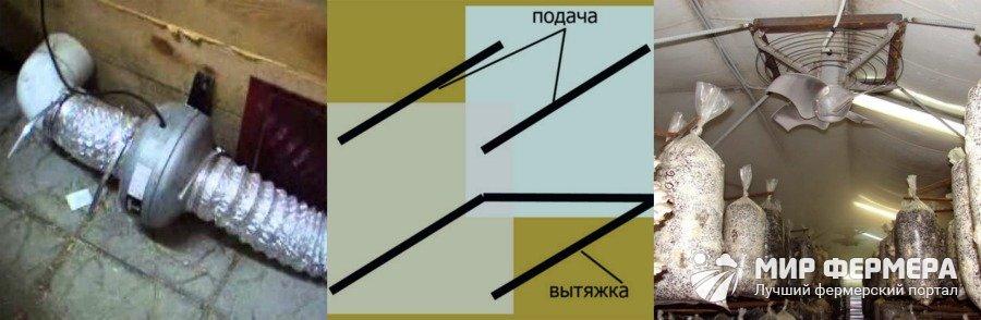 Кратность воздухообмена при выращивании вешенки 46
