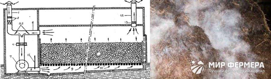 Пастеризация компоста в домашних условиях