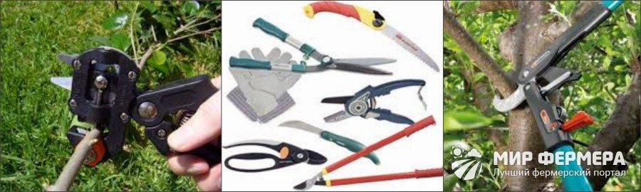 Садовые инструменты для обрезки кустов