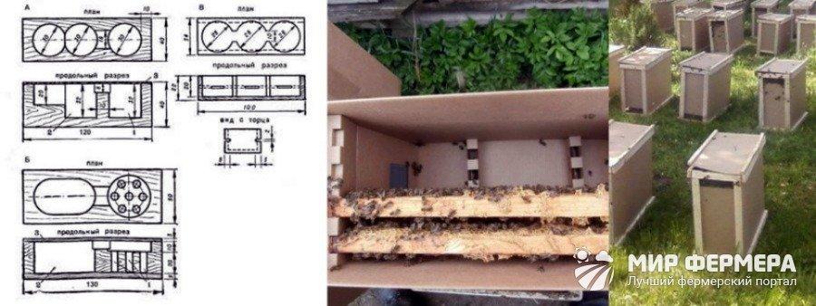 Клетка для перевозки пчел своими руками