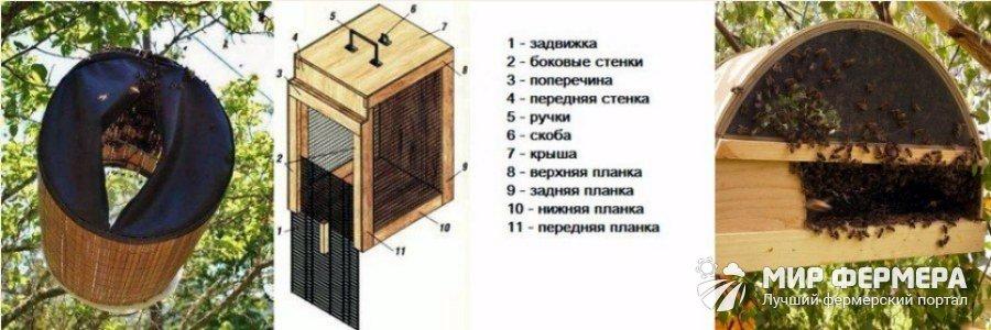 Роевня для пчел своими руками чертежи 84