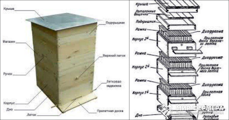 чертеж улья для пчел