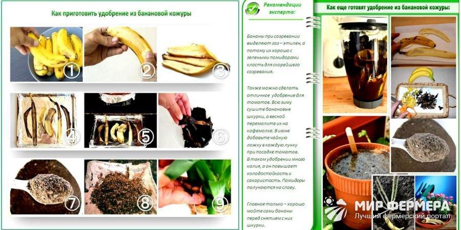 Как сделать подкормку из банановой кожуры