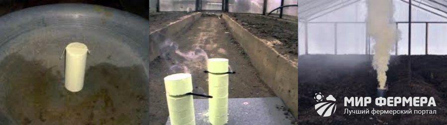 Как бороться с плесенью в подвале частного дома и гаража