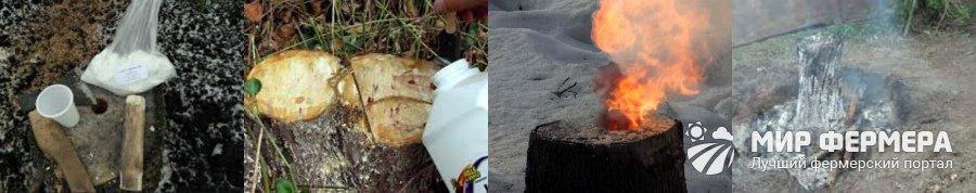 Химическое удаление пня и корней