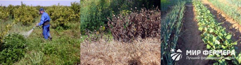 Автоматический удалитель извлекатель сорняков Торнадо средство уничтожения травы