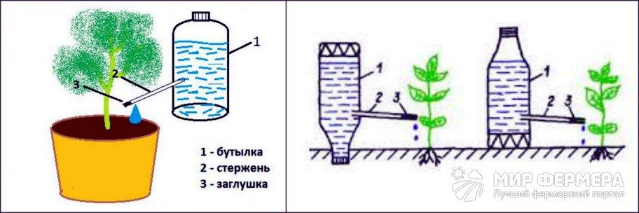 Капельный полив из бутылки и стержня
