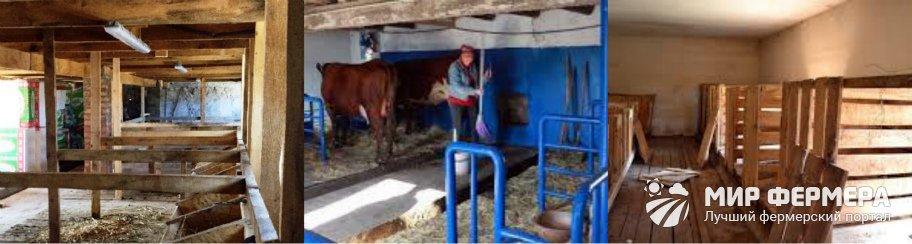 Коровник на 5 коров