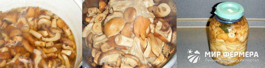 Как солить грибы горячим способом