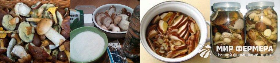 Как солить белые грибы