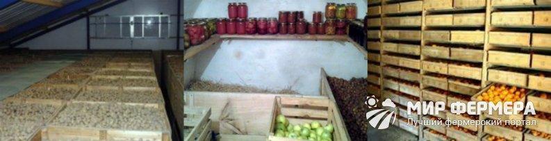 Погреб для хранения картошки