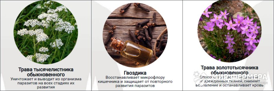 Detoxic от паразитов состав