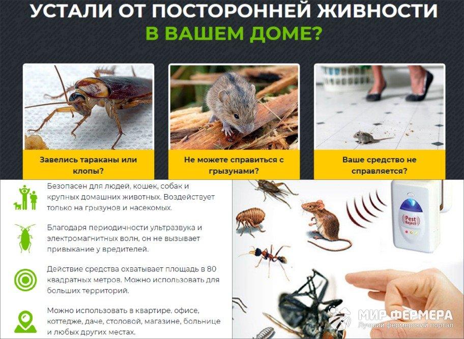 Pest Reject плюсы и минусы