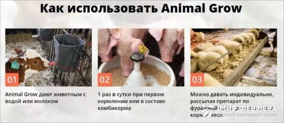 Animal Grow инструкция