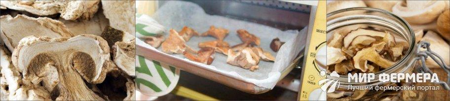 Как сушить грибы в микроволновке