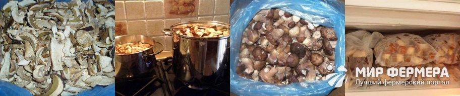 Сколько варить белые грибы перед заморозкой