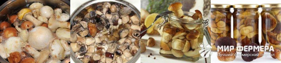 Сколько варить белые грибы для маринования