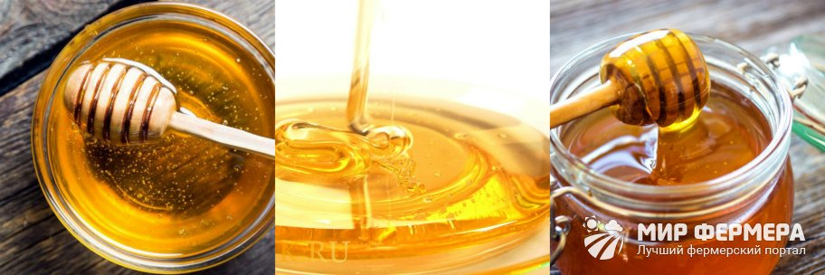 Как хранить мед жидким