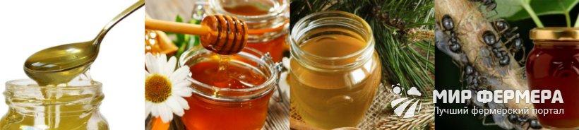 Падевый мед