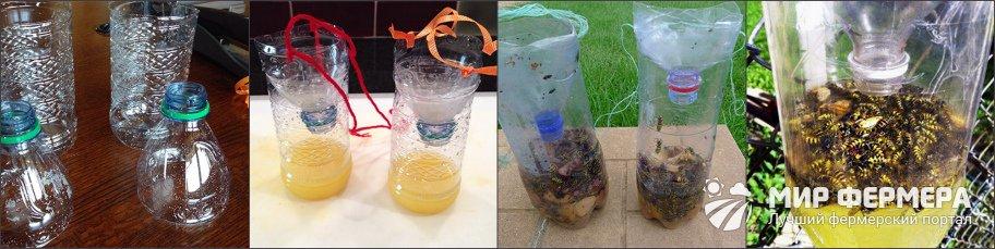 Ловушка для пчел из бутылки