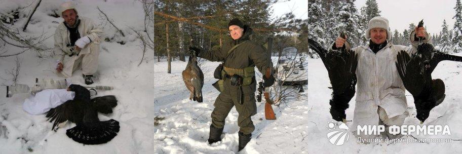 Зимняя охота на глухаря