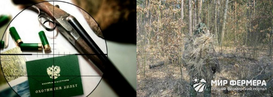 Охота на кабана снаряжение