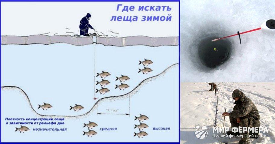 Как ловить леща на течении