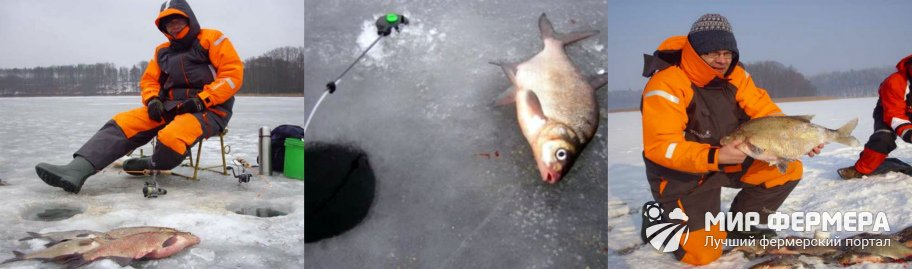 Рыбалка на леща без прикорма