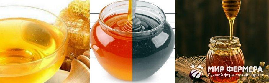 Цвет натурального меда