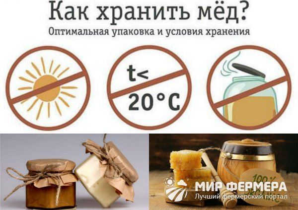 Хранение меда в домашних условиях
